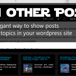 Other Posts Plugin