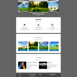 Marketplace - WordPress Marketplace Theme
