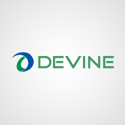 Devine – Responsive WordPress Theme