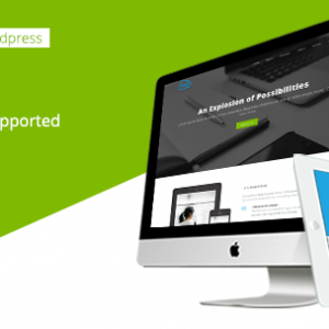 Twing Onepage Business WordPress Theme